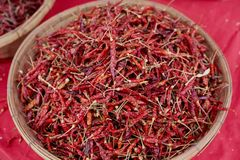 Red chilli in plate Royalty Free Stock Photo