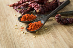 Red chilli powder and dried chillies Stock Images
