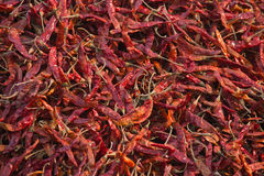 Red chilli sold in local market, Nepal Royalty Free Stock Images