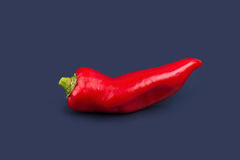red chilli vegetable Isolated on black background Stock Images