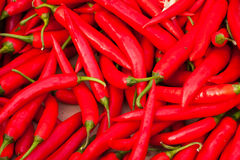Red Chillies. A random array of red chillies Royalty Free Stock Image