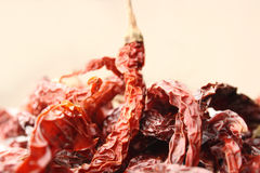 Red chillies. Studio shot of hot spice red chilli Royalty Free Stock Images