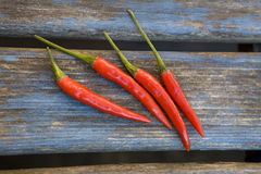 Red chillies Stock Image