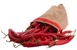 Red chillies. Royalty Free Stock Photos
