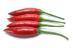 Free Red Chillies Stock Photography - 16865032