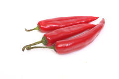 Red chillies. Red sharp pepper chillies isolated on white Stock Image
