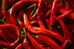Red Chillies Stock Photography