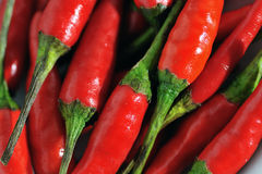 Red chillies close up Royalty Free Stock Images