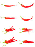 Red chillies collection Royalty Free Stock Photos