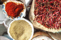 Red Chillies, Coriander Seeds and Chilly Powder Stock Images