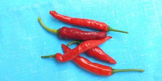 Red chillies Royalty Free Stock Photography