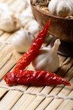 Red chillies and garlic Stock Photography
