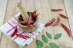 Red chillies with mortar and pestle Stock Image