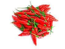 Red chillies piled up Stock Images