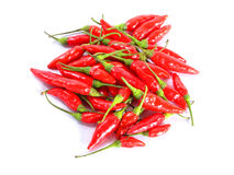 Red chillies piled up Stock Image