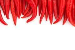 Red chillies Royalty Free Stock Photo