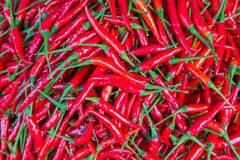 Red chillies for sale at market Stock Photos
