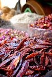 Red chillies at the spice market Stock Images
