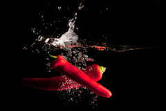Red Chillies Water Splash. Red Chillies drop in a water tank creating a splash Stock Images