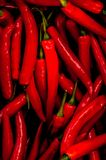 Red chillis background Royalty Free Stock Images