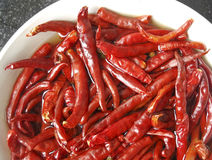 Red chilly dried Cayenne pepper. In a white color bowl Royalty Free Stock Image