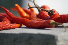 Red chilly Stock Photos