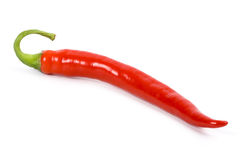 Red chilly pepper Royalty Free Stock Photo