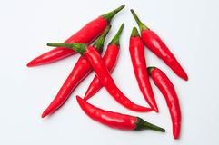 Red chilly pepper Royalty Free Stock Image