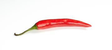 Red chilly pepper isolated on white background. Royalty Free Stock Photos