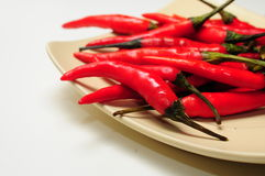 Red chilly pepper Stock Photos
