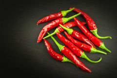 Red chilly pepper on wooden black background. Red hot chili peppers. Domestic cultivation extra hot chilli burn. Stock Images