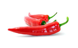 Red chilly peppers Stock Images
