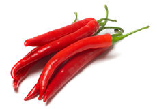 Red chilly peppers Stock Image