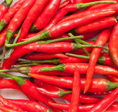Red chilly peppers Royalty Free Stock Photo