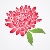 of red chinese flower Royalty Free Stock Images