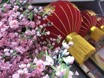 Red Chinese hanging lamp and pink blossom. Chinese new year decoration royalty free stock images