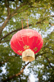 Red chinese lamp Royalty Free Stock Photos