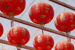 Red Chinese lantern in Chinese New Year. stock images