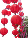 Red chinese lanterns. Red chinese lanterns isolated on a white background Royalty Free Stock Image