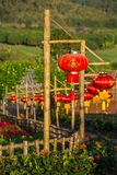 Red Chinese lanterns Stock Photography