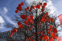 Red Chinese Lanterns in Liverpool, UK. Red Chinese Lanterns suspended in a tree in Liverpool, UK for Chinese New Year celebrations Stock Photo