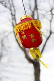 Red Chinese paper lantern Stock Photos