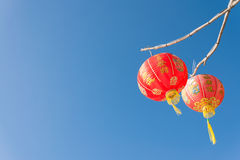 Red Chinese Paper Lanterns Stock Photo