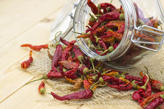 Red chot chili peppers Stock Images