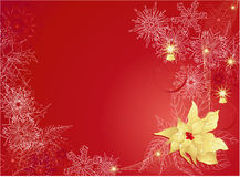 Red christmas background. Red abstract background with poinsettia and snowflakes Stock Images