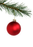 Red Christmas ball. Red Christmas hanging from branch of Christmas tree - isolated on white background Stock Photo
