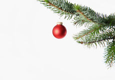 Red christmas ball. Hanging on a pine branch on a white background Royalty Free Stock Photos