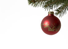 Red Christmas ball. Red Christmas ball on a pine tree Stock Photography
