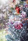 Red christmas ball and bell on christmas tree Royalty Free Stock Image