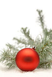 Red Christmas ball and a branch of Christmas tree with copyspace Stock Photography